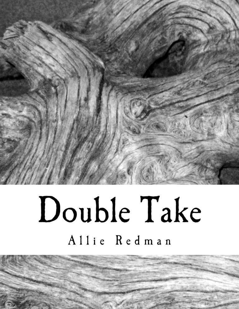 double_take_cover_for_kindle