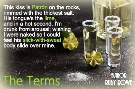 The Terms - Tequilla teaser.jpg