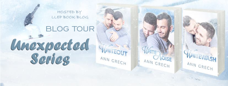 Unexpected Series Blog Tour Banner.png