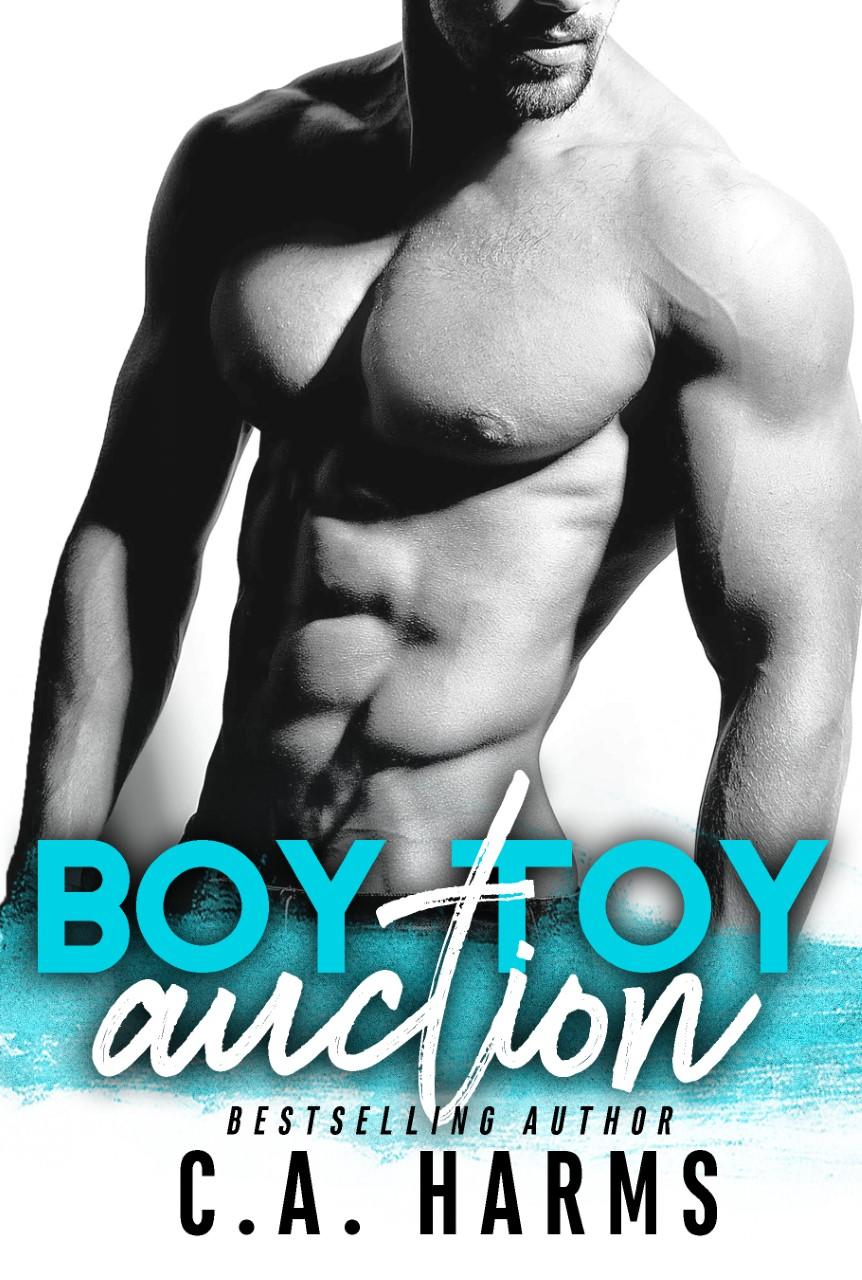 thumbnail_Boy Toy Auction ebook (1).jpg